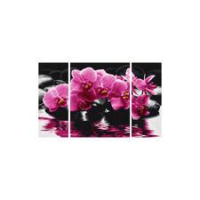 Malen nach Zahlen - Triptychon Orchideen Malen nach Zahlen. Mit malfertig gemischten Acrylfarben.