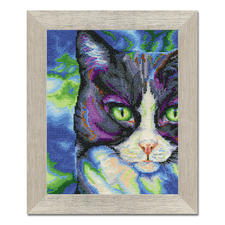 Stickbild - Snowshoe-Katze Tierisch gut – Alles rund um die Katze.