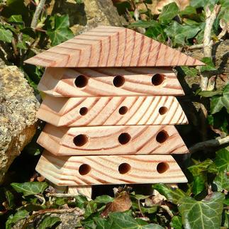 Minibugs - Bienenhaus