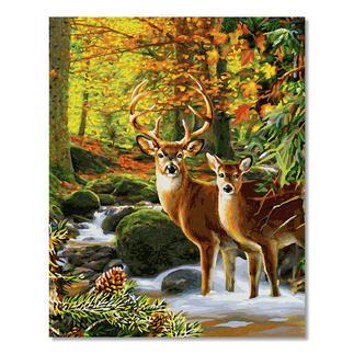 Malen nach Zahlen - Hirsche im Wald