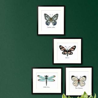 Stickbilder - Naturstickereien Stickbilder - Naturstickerein